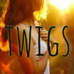 Mini Review~ Twigs by Alison Ashley Formento