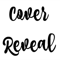 Cover Reveal ~ Boomerang by Noelle August