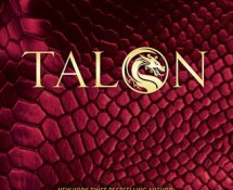 Audio Book Review | Talon by Julie Kagawa