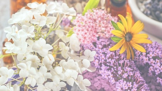 5 Essential Oils You Need In Your Home & Their Uses