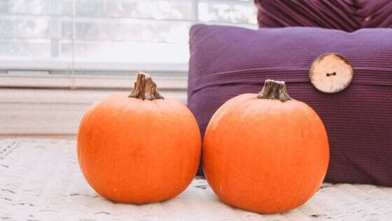 Jump On The Pumpkin Bandwagon – The Health Benefits of Pumpkin